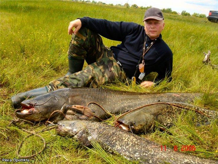 Páchnoucí rybaření